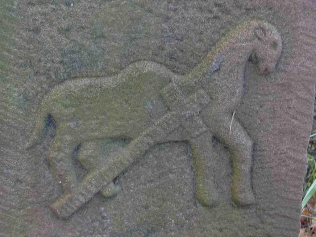 Sentier des chameaux for Portent un ecusson